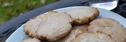 flo's winter cookies